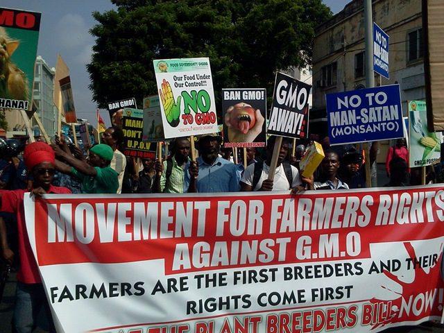 GMOs Demo