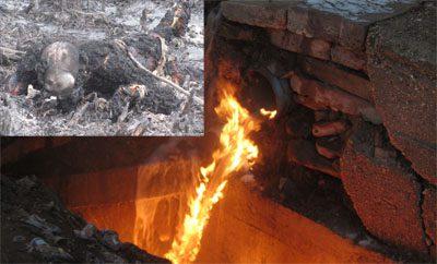 TOR FIRE 2