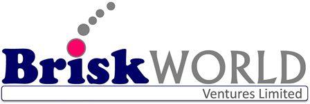 BriskWORLD logo