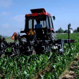 wpid-Agriculture-300x187.jpg