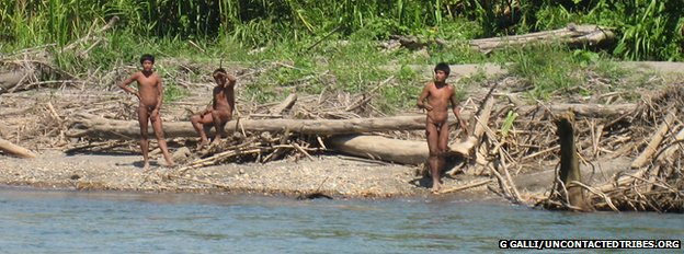 It is thought the Mashco-Piro tribe had not been spotted by outsiders before August 2011 (file photo)