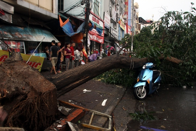 Photo taken on June 13, 2015 shows a motorbike trapped under an uprooted tree in Hanoi, capital of Vietnam. One person was killed by uprooted tree while three others were wounded. (Xinhua/VNA) (lrz)