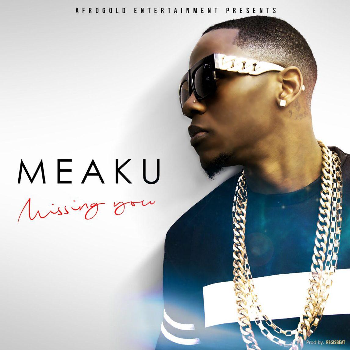 Meaku- Missing You (Artwork)
