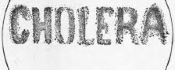 Cholera kills four
