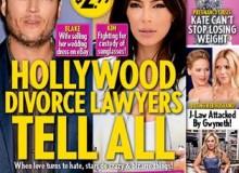Juiciest Hollywood Divorce Fights Revealed