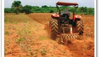Teak plantations farmers cry over effects of mining