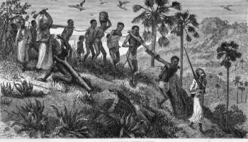 Still A Slave? -Part 1