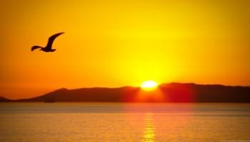 Sunrise 1894 to 2014 Sunset