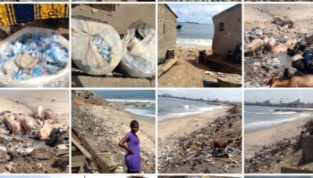 Photos showing how bad our beaches look