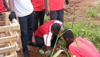 Airtel Staff Plant Trees In Kumasi