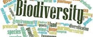 Journalists schooled on biodiversity