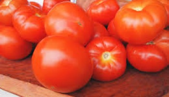Tomato prices see sharp drop in Tamale