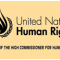 Gambia executions an unfortunate setback for human rights protection — Pillay