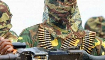 Boko Haram Storms Adamawa State Taking 60 Women