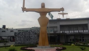 Njoku appeals against the judgment in favour of Jonathan's re-election bid